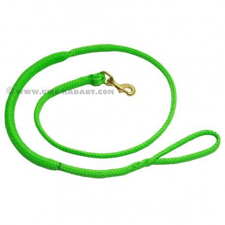 Zugleine 2.5m grün (1-Hund)