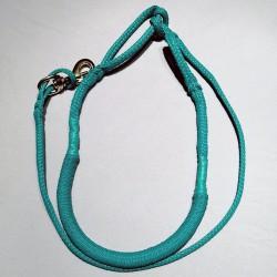 Ligne de trait 2.5m turquoise (1-chien)