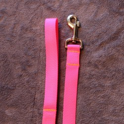Laisse pink (néon)