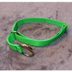 Halsband grün (neon) mit Zugstop