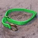 Halsbänder mit Zugstop