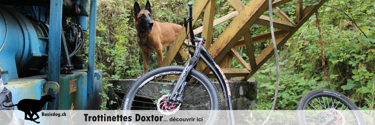 Doxtor Scooter